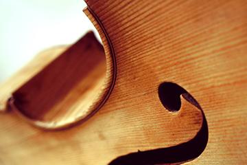 Koncert  Ansambla musica cubicularis